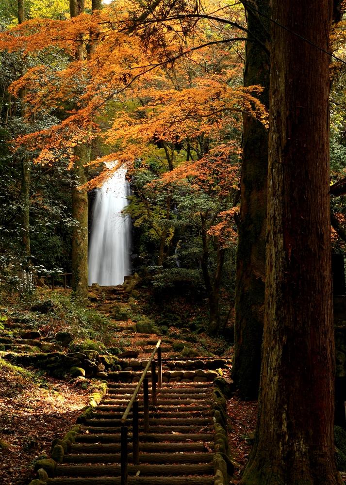 西原村にある白糸の滝 秋