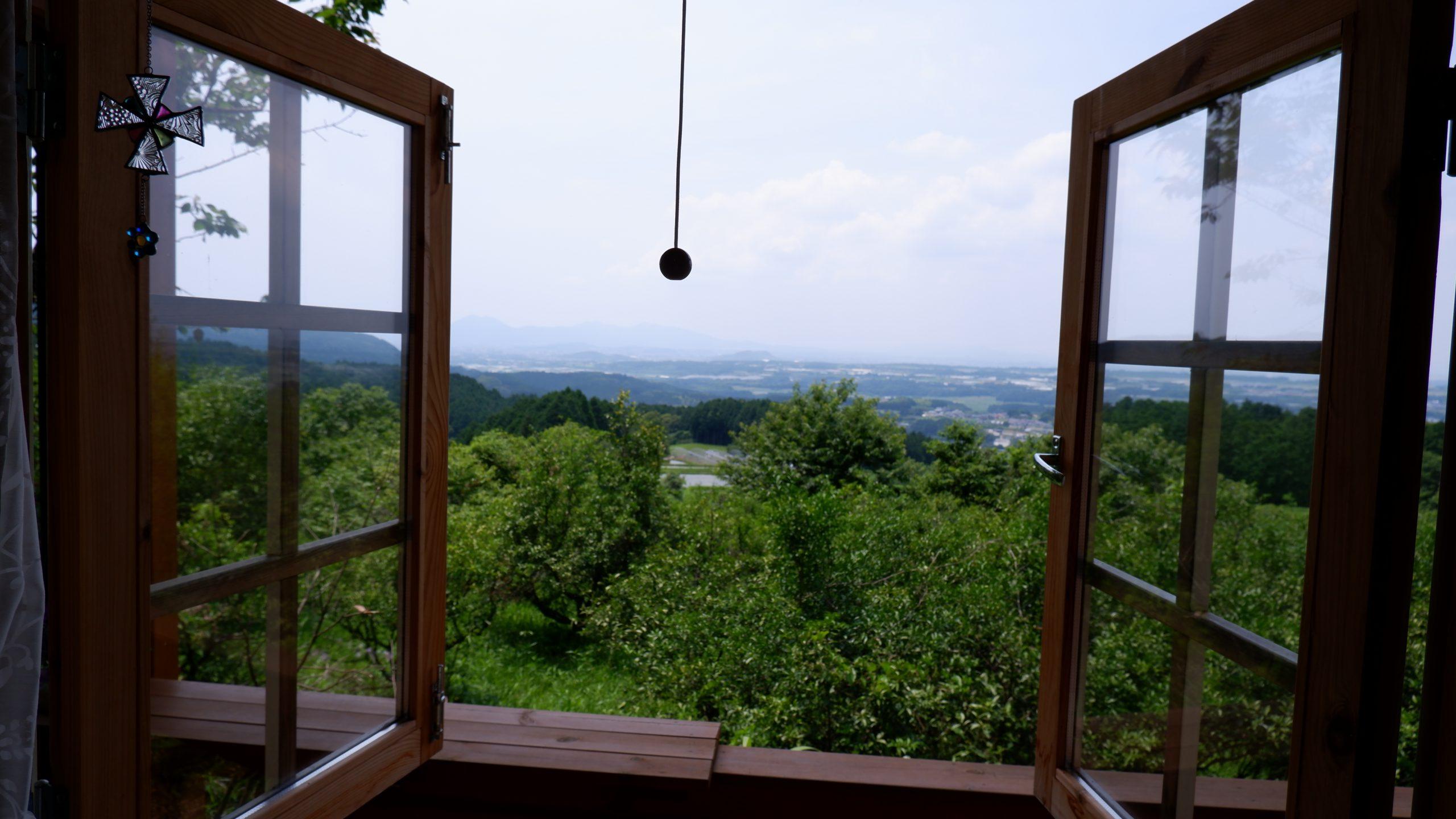 森の癒 眺望