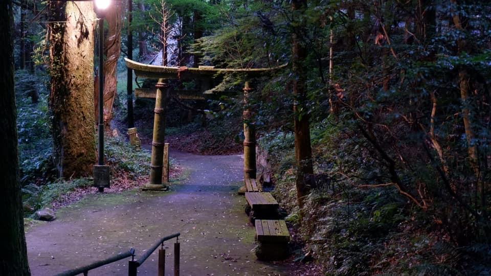 白糸の滝ライトアップ神社2021