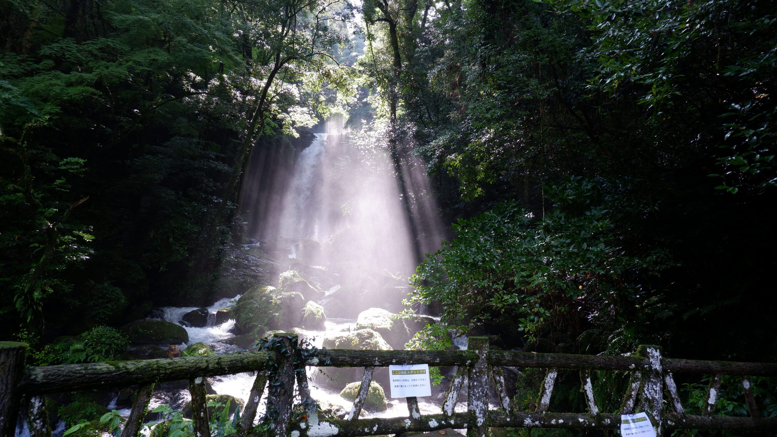 日を浴びた滝