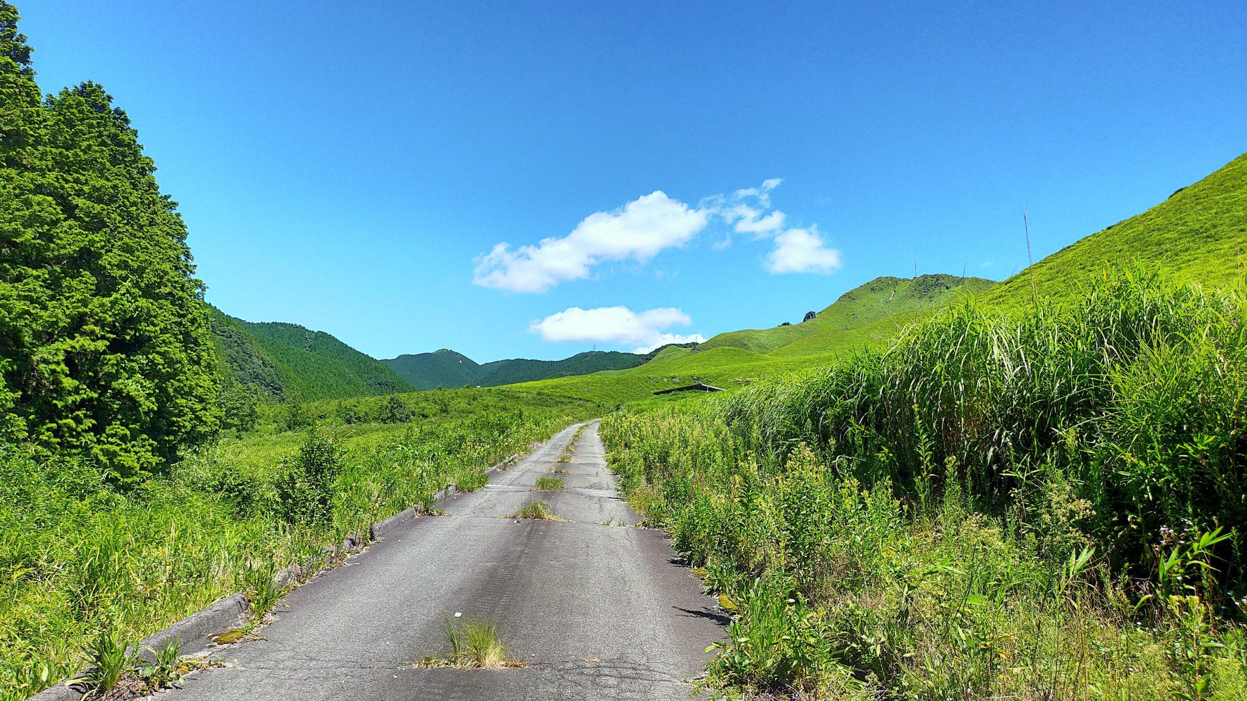 出ノ口登山道からの景色 山