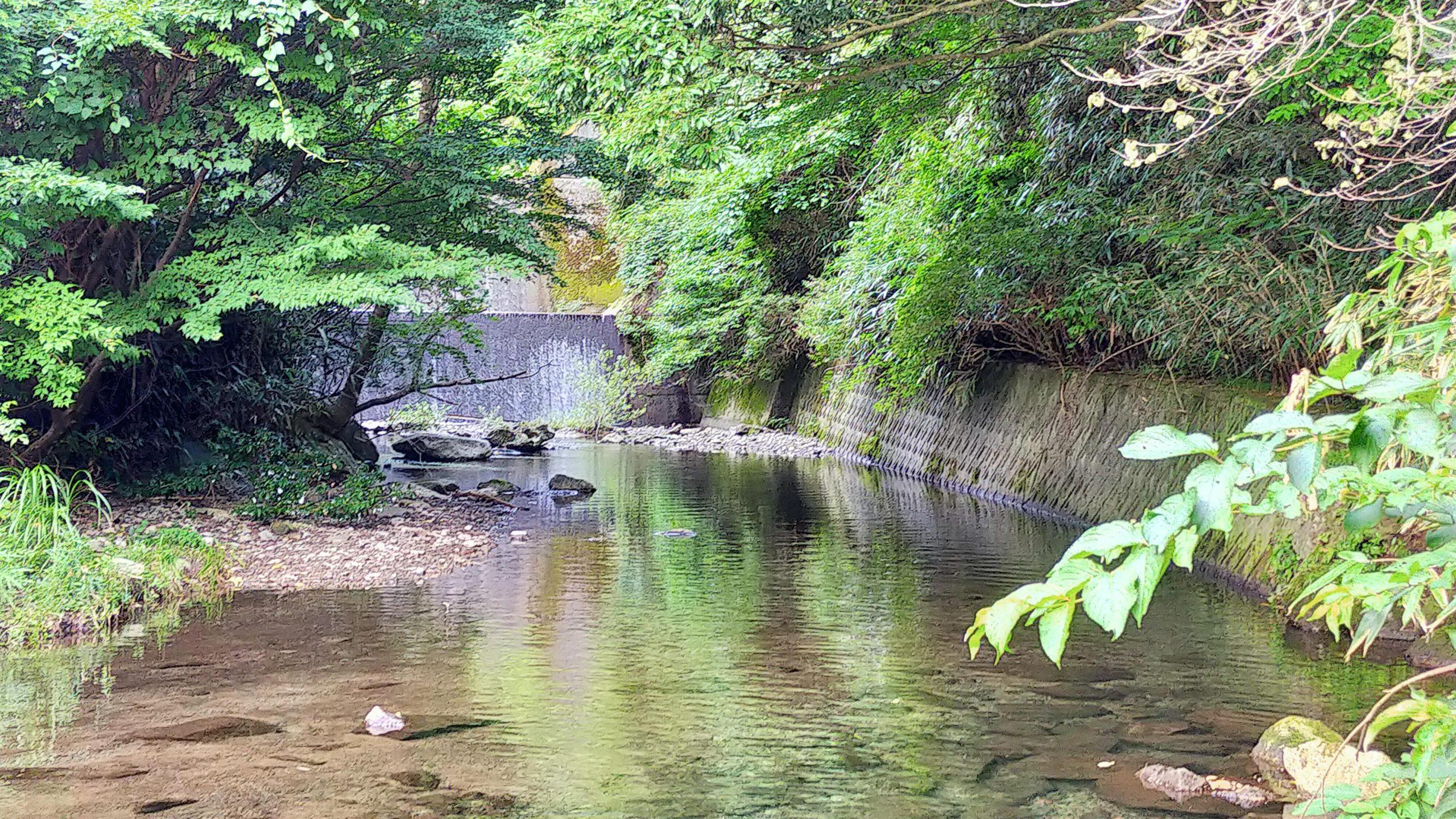 川の道 上側